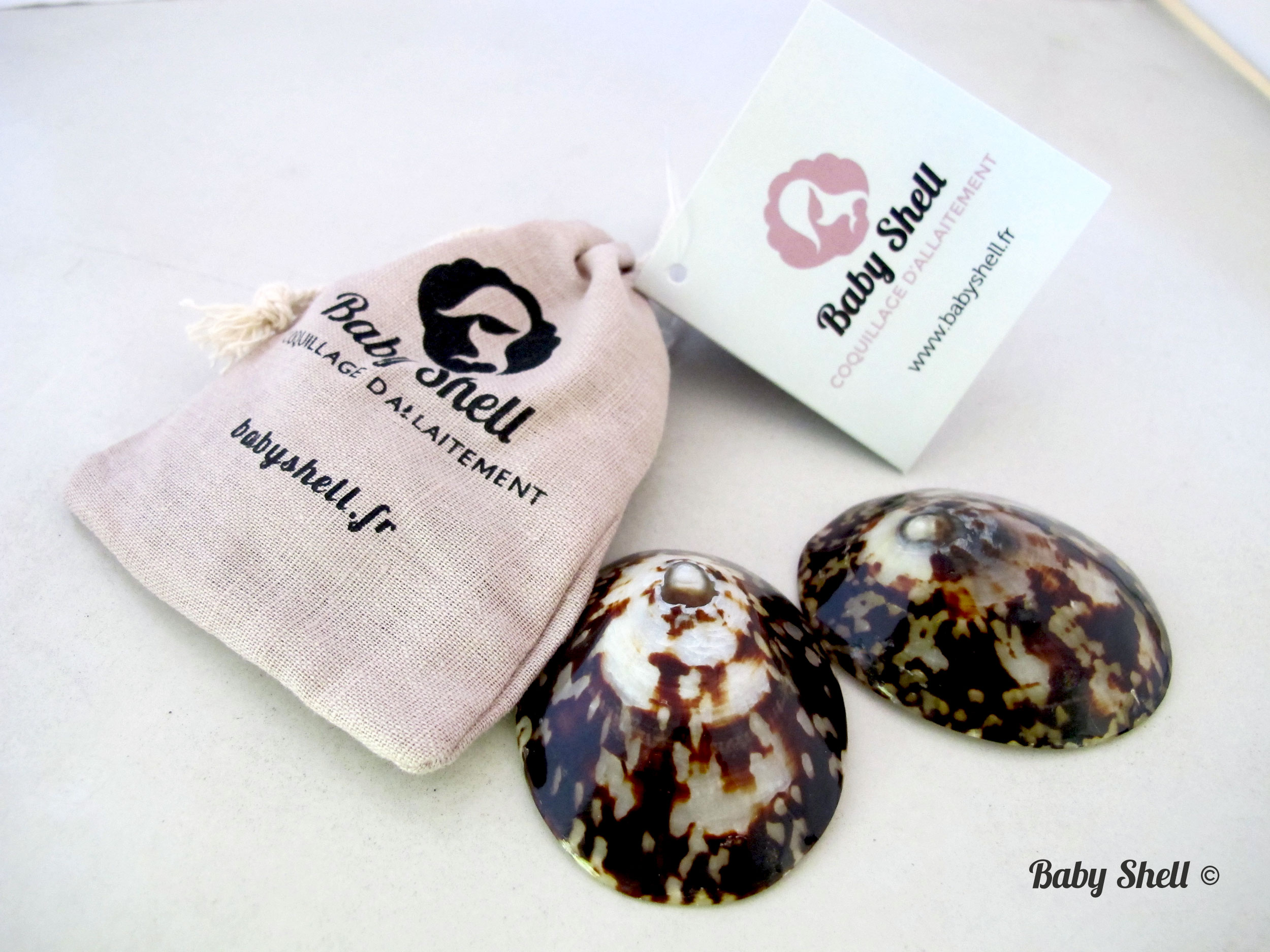 breastfeeding sea shell